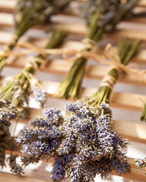 Lavender s