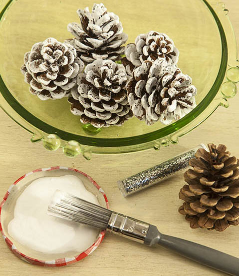 Painted Fir  Cones