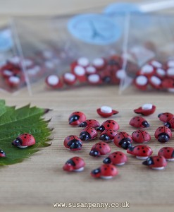 cute wooden ladybirds